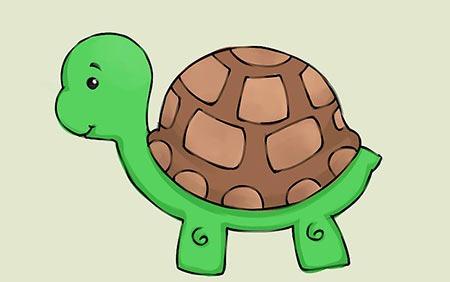 مثل لاکپشت آرام و آهسته باید در جاده تغییر حرکت کنی